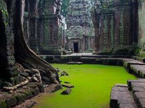 Ta Prohm. Angkor, Cambodia.