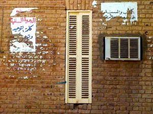 the university of khartoum
