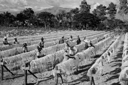 haiti - 1951