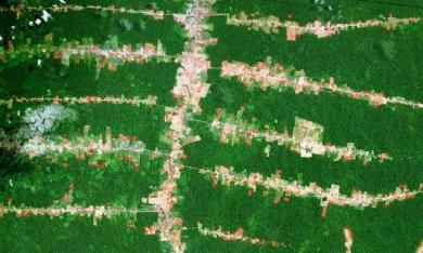 Forest clearing along roads in the southern Brazilian Amazon - 95% of deforestation happens near roads