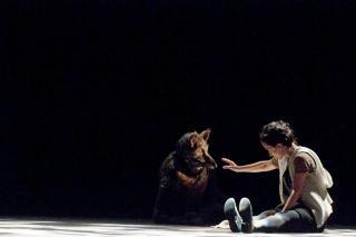11-05PCR25-Le-petit-chaperon-rouge@Elisabeth-Carecchio-HD