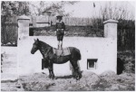 4 Gombrowicz as a young boy standing on a horse in Malosyce in1909