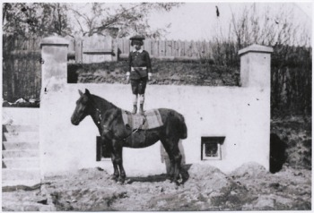 4 Gombrowicz as a young boy standing on a horse in Malosyce in 1909